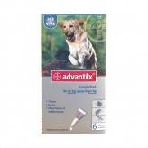Pipettes Advantix Grand Chien